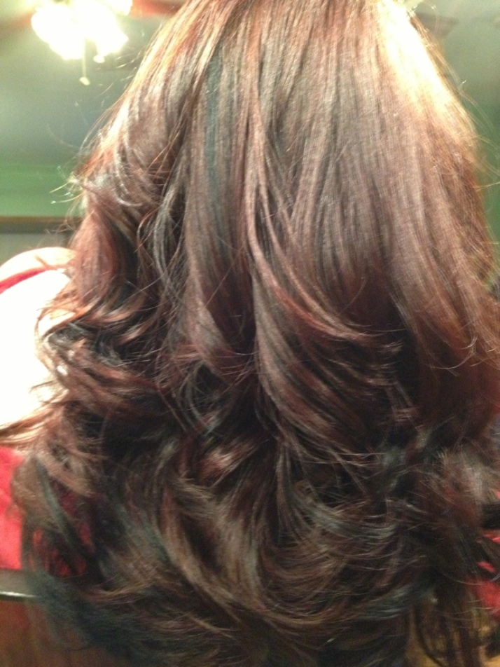 Lolights Hair Salon Florham Park